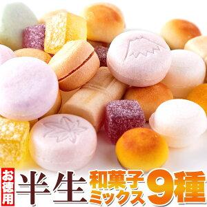 半生和菓子ミックス 9種 詰め合わせ 880g (440g×2袋) 和菓子 個包装 桃山 栗しぐれ 梅ようかん 汐最中