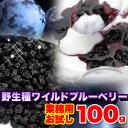 【お試し】野生種ワイルドブルーベリー100g(常温商品) 天然 乾燥フルーツ 無添加 子供