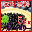 【業務用】野生種ワイルドブルーベリーたっぷり5kg!!(常温商品) ドライフルーツ 美容健康 アントシアニン まとめ買い