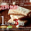 【送料無料】【訳あり】豆乳おからマクロビプレーンクッキー5kg(常温商品) 業務用 マクロビオティック 日本製