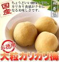 国産豊後梅100%使用 無着色☆お徳用大粒カリカリ梅500g(常温商品) 日本製 梅干し 個包装 おやつ