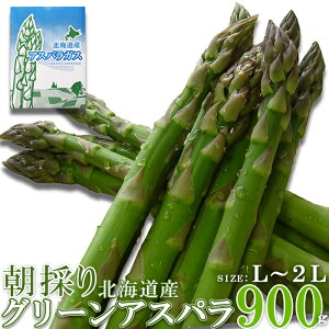【期間限定】グリーンアスパラ(900g) 北海道 アスパラ アスパラガス 野菜 生鮮 食べ物 美味しい お礼 国産 ギフト 贈り物 贈答用 送料無料[冷蔵](NK00000097)