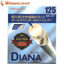 ウィニングショット(WinningShot)ディアナ 単張り[ゲージ:1.25mm/1.30mm]DIANA[M便 1/2]|ガット ストリング ナイロン テニス ラケット テニスグッズ テニスガット テニス用品 プレゼント 硬式 グッズ テニス硬式ガット 日本製 テニスラケット