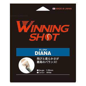 ウィニングショット(WinningShot)ディアナ 単張り[ゲージ:1.25mm/1.30mm]DIANA[M便 1/2] ガット ストリング ナイロン テニス ラケット テニスグッズ テニスガット テニス用品 プレゼント 硬式 グッズ テ