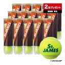 ダンロップ(DUNLOP) テニスボール St.JAMES(セントジェームス)4球入 2箱(30缶/120球)