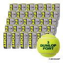 ダンロップ DUNLOP テニスボール DUNLOP FORT(ダンロップ・フォート) 2球入 1箱(30缶/60球) DFEYL2CS60