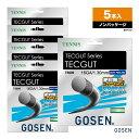 ゴーセン(GOSEN) ボックスガット テックガット16 TS600 単張りガット(5本入)