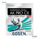 ゴーセン(GOSEN) テニスガット ウミシマ AKプロ CX17 (AK PRO CX17) ナチュラル 単張りガット TS761