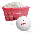 ケンコー(KENKO) ソフトテニスボール かご入り120球 ホワイト TSOWK-V