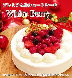 【本州送料無料】ホワイトベリー 約15cm 5号サイズ...