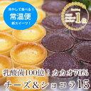 全国送料無料 乳酸菌100億チーズケーキ&カカオ70ガトーショコラ 15個入お試し スイーツ 洋菓子 ケーキ セット 詰め合…