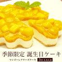 誕生日ケーキ バースデーケーキ 本州 送料無料  季節限定 マンゴー レア チーズケーキ 5号 4〜6名分誕生日ケーキ 宅…