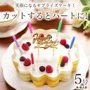 誕生日ケーキ バースデーケーキ 誕生日プレゼント 本州 送料無料 幸せのダブルチーズケーキ 5号大人 子供 女性 男性 …