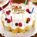 誕生日ケーキ バースデーケーキ 本州 送料無料 幸せのダブル チーズケーキ 5号 4?6人前妻 彼女 女性 男性 女友達 子供…