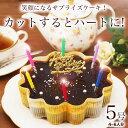 誕生日ケーキ バースデーケーキ 誕生日プレゼント 本州 送料無料星空のショコラ 5号ギ...