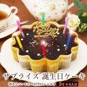 誕生日ケーキ バースデーケーキ本州 送料無料 星空のショコラ 5号? 4〜6人前チョコ チョコレートケーキ 宅配 メッセー…