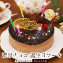 誕生日ケーキ バースデーケーキ本州 送料無料 生チョコトルテ 5号? 4〜6人前宅配 メッセージ 面白い サプライズ ギフ…