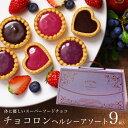 バレンタイン バレンタインチョコ チョコロン ヘルシーアソート9個入 チョコレート 本命 義理チョコ 予約 おもしろ ギ…