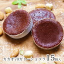 送料無料 チョコ チョコレート スイーツご自宅用 カカオ70ガトーショコラ 15個入訳あり ではない ポイント消化お菓子 …