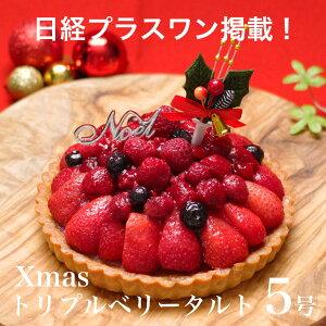 X'mas クリスマス ケーキ プレゼント ギフト 本...