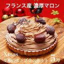 X'mas クリスマス ケーキ プレゼント 本州 送料無料至福のモンブランタルト 5号クリスマス ギフト 女友達 母 父 義理 …
