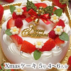 クリスマスケーキ 予約 本州 送料無料 2019ホワイトベリー5号 Ver.2 4〜6人前誕生日ケーキ バースデーケーキ 生クリーム 苺 たっぷり ショートケーキ女性 子供 かわいい おしゃれ 翌日 配送日指定