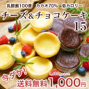 送料無料1000円乳酸菌100億チーズケーキ&カカオ70ガトーショコラ 15個入ギルトフリー スイーツ スウィーツ お菓子 詰…