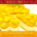【夏限定】お中元 ギフト夢の完熟マンゴーてんこ盛り!マンゴーレアチーズケーキ(4〜6名分)ご挨拶に最適なギフト!!お誕生日ケーキ、お祝いにオススメ!