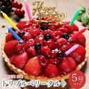 【あす楽 12時まで】誕生日ケーキ 送料無料 バースデーケーキ 誕生日プレゼント 大人 子供 翌日 配送 苺 フルーツ た…