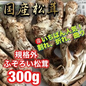 国産松茸規格外ふぞろい300g(一番人気)
