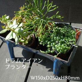 プランター ドラム缶リユース材 / 寄せ植え コンテナ 鉢カバー リサイクルアイアン ジャンク ガーデン ラスティック(KMN-048)