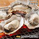 旅サラダ で絶賛 紹介広島牡蠣老舗の味!カンカン焼き 殻付き牡蠣35個[生食可]