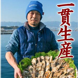 牡蠣【送料無料】広島牡蠣【生産者直販】生牡蠣むき身500gと殻付きかき10個(1kg以上)入り*ナイフ・軍手・レシピ付♪(Aセット)生食用【smtb-kd】