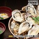 めざましテレビ いのお飯 で紹介 広島牡蠣老舗の味!むき身500g殻付き10個[生食用]