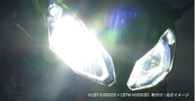プロテック CBF600S / CBR600RR / YZF-R25 / Ninja1000 / Ninja650等用 LEDヘッドライトバルブキット LB7W-H H7 Hi/Lo 6000K ※Hiビーム側専用 65030