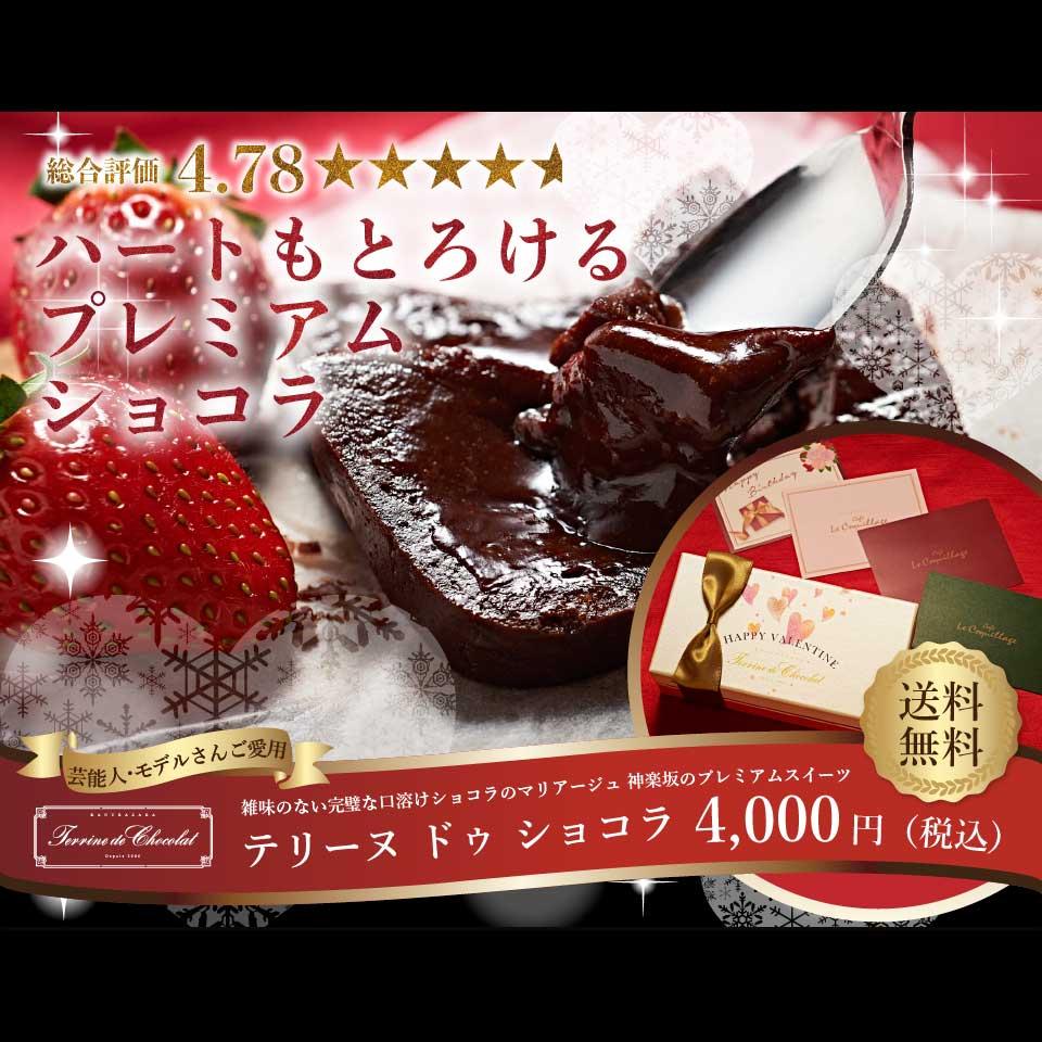 遅れてごめんね バレンタイン チョコレート 2019 本命 スイーツ お菓子 ケーキ チョコレートケーキ 送料無料 神楽坂 人気 濃厚 高級 ギフト お返し プレゼント ガトーショコラ 手土産 詰め合わせ 誕生日 テリーヌ ドゥ ショコラ