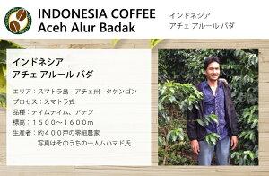 自家焙煎コーヒー豆100g(約7-10杯分)インドネシアアチェアルールバダ豆のまま/挽き選べます【スペシャルティコーヒー】2018年8月N&C成田珈琲