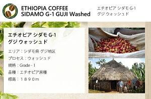 自家焙煎コーヒー豆100g(約7-10杯分)エチオピアシダモG-1グジウォッシュド豆のまま/挽き選べます【スペシャルティコーヒー】N&C成田珈琲