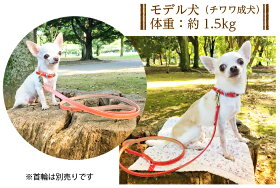 おしゃれでかわいい本革の犬リード