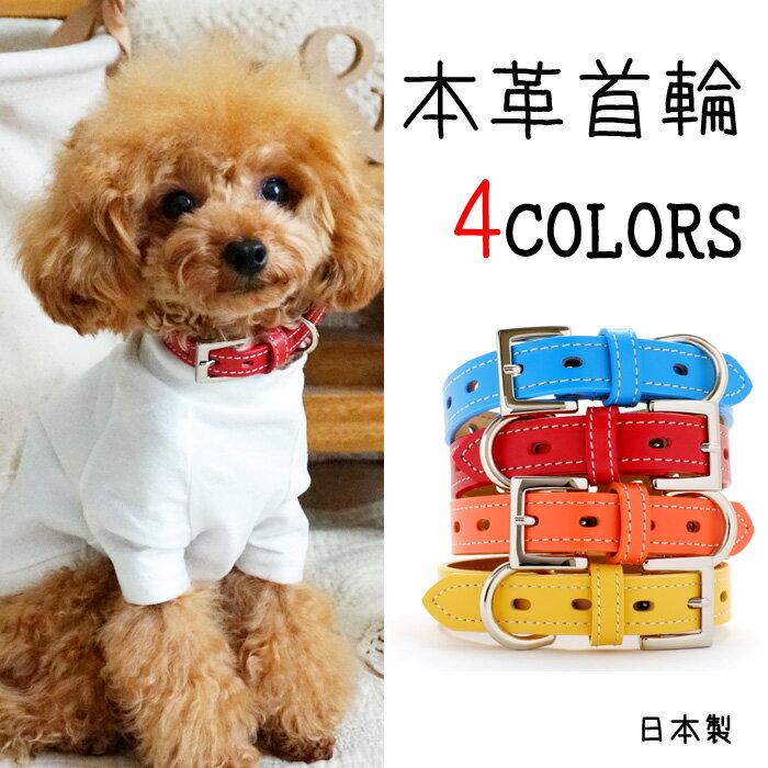 犬 首輪 犬の首輪 小型犬 中型犬 革 革製 皮 本革 レザー おしゃれ かわいい No1