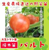 大玉トマトパルト
