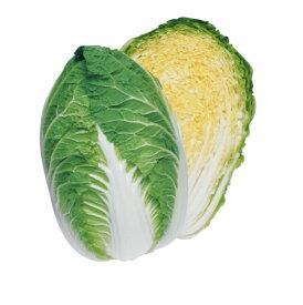 【種子】ハクサイ・晴黄65 【5000粒】タキイのタネ 白菜