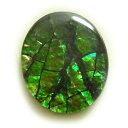 アンモライト(Ammolite) 1点限定 トリプレットルース 約10x12mm 3.08ct 裸石 ルース アンモナイト