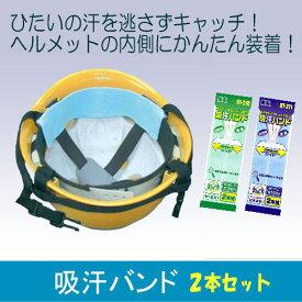 【熱中症対策】汗とりパッド2本×10袋組(カラー:青/緑)【大中産業】