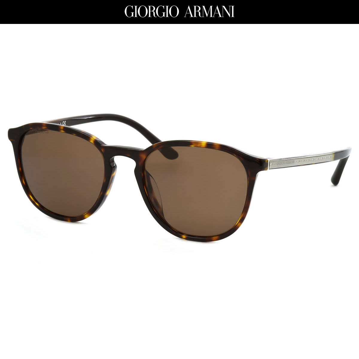 GIORGIO ARMANI ジョルジオアルマーニ サングラスAR8104F 502673 53サイズFRAMES OF LIFE フレームズ オブ ライフ トレンド レトロジョルジオアルマーニ GIORGIOARMANI メンズ レディース