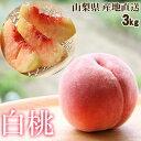 山梨県産 白桃 2.5kg 【送料無料】【産地直送】