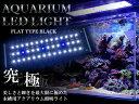 水槽用 LED 照明 LEDライト LED300 5.5W ブルー×ホワイト 【アクアリウム 熱帯魚 淡水魚 海水魚 水草 サンゴ 観賞魚 水槽 レイアウト】