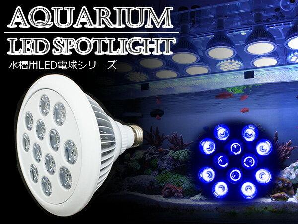 交換球 LED スポットライト 青8紫外線4灯 UV付 照射角90度 水槽用照明 LED照明 LEDライト 【アクアリウム 熱帯魚 淡水魚 海水魚 水草 サンゴ イソギンチャク ミドリイシ シャコガイ 観賞魚 水槽 レイアウト】
