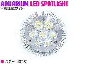 交換球 LED スポットライト 白7灯 照射角60度 水槽用照明 LED照明 LEDライト 【アクアリウム 熱帯魚 淡水魚 海水魚 水草 サンゴ イソギンチャク ミドリイシ シャコガイ 観賞魚 水槽 レイアウト】