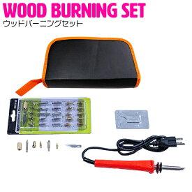 ウッドバーニング セット 電熱ペン 110V/60W 350℃ 焼き絵 木彫り DIY 作業工具 はんだ付け 薪焼き 革切りなど ウッドバーナー 熱加工 デザイン 文字入れ 木目焼きキット